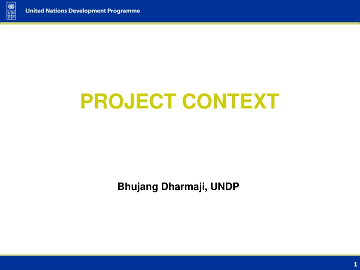 Bhujang Dharmaji, UNDP