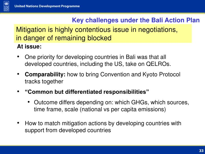 Key challenges under the Bali Action Plan