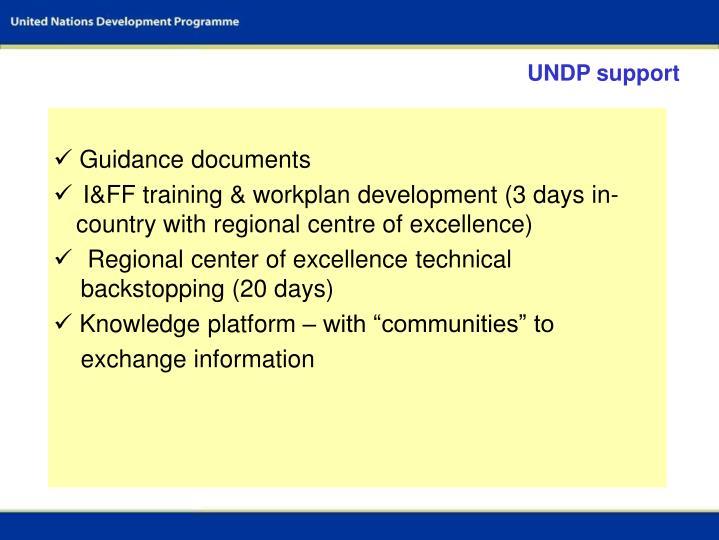 UNDP support