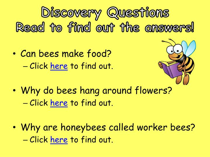 Discovery Questions