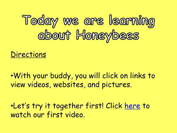 Today we are learning about Honeybees