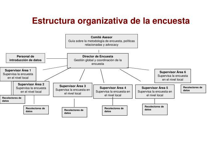 Estructura organizativa de la encuesta