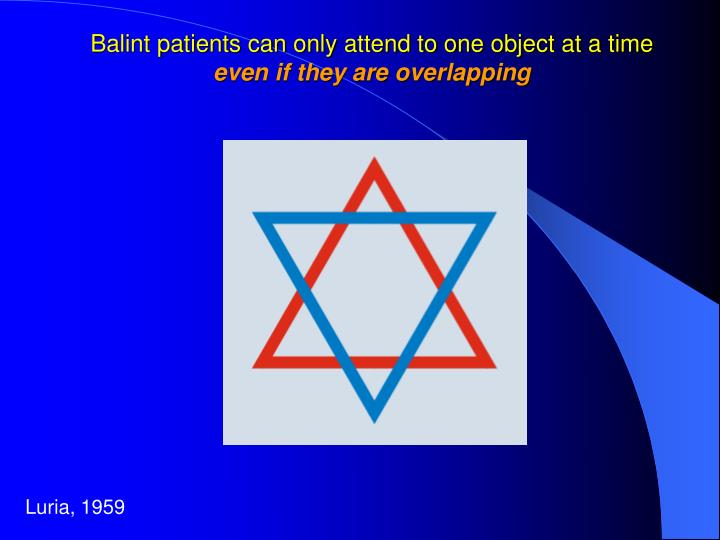 Balint patients can only attend to one object at a time