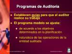 programas de auditor a