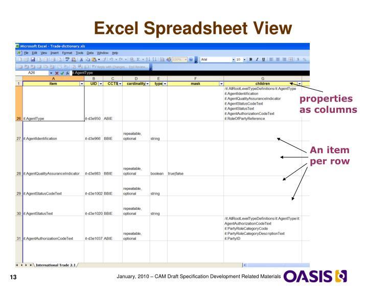 Excel Spreadsheet View