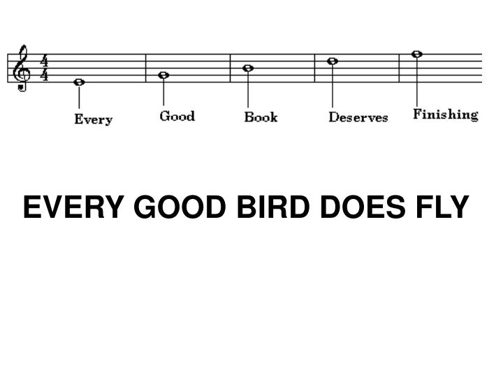 EVERY GOOD BIRD DOES FLY