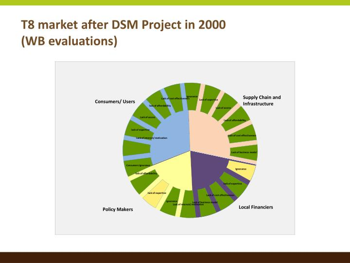T8 market after DSM Project in 2000
