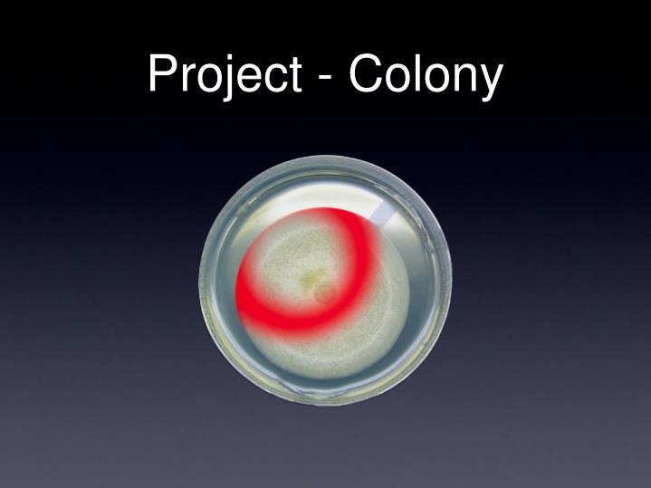 Project - Colony