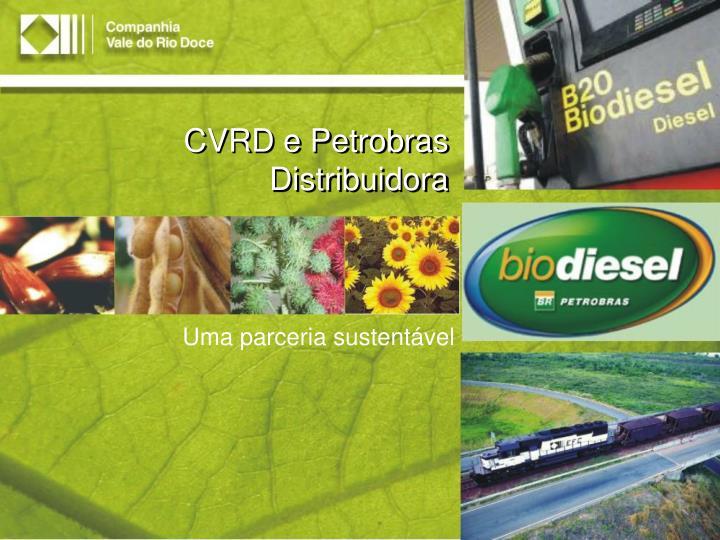 CVRD e Petrobras Distribuidora