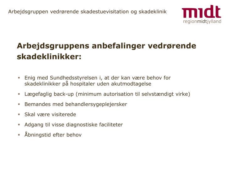 Arbejdsgruppens anbefalinger vedrørende skadeklinikker: