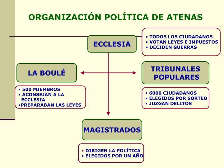 ORGANIZACIÓN POLÍTICA DE ATENAS