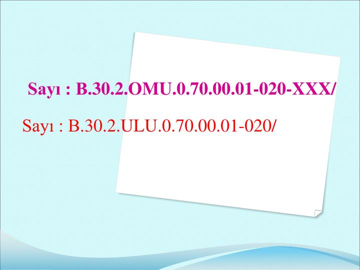 Sayı : B.30.2.ULU.0.70.00.01-020/