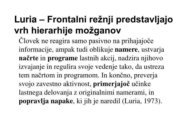 Luria – Frontalni režnji predstavljajo vrh hierarhije možganov