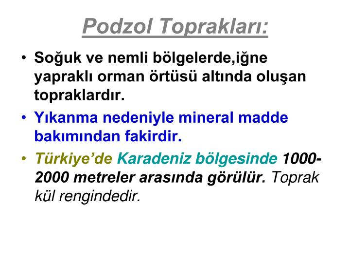 Podzol Toprakları: