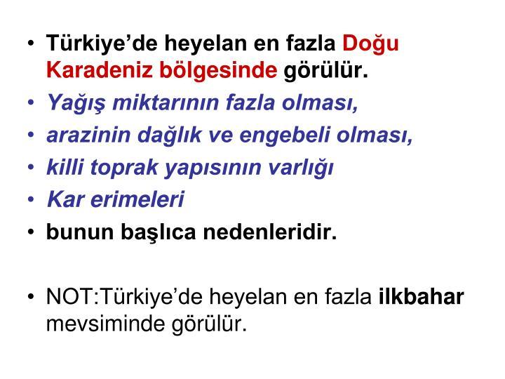 Türkiye'de heyelan en fazla