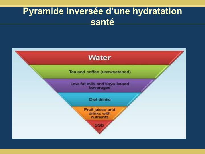 Pyramide inversée d'une hydratation santé