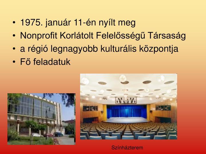 1975. január 11-én nyílt meg