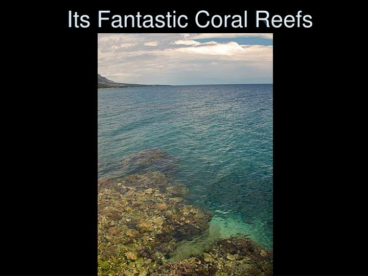 Its Fantastic Coral Reefs