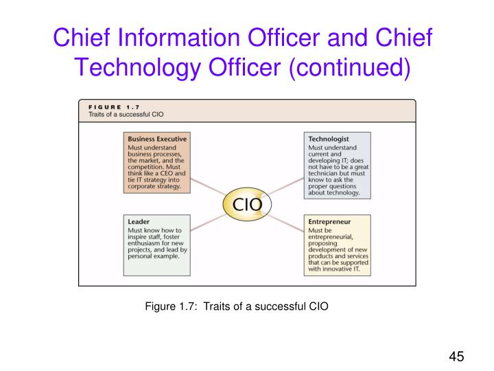 Chief Information Officer and Chief Technology Officer