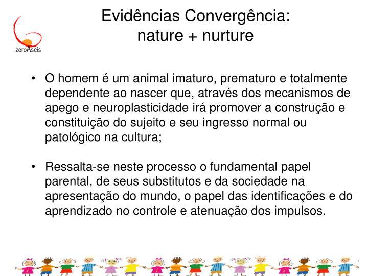 Evidências Convergência: