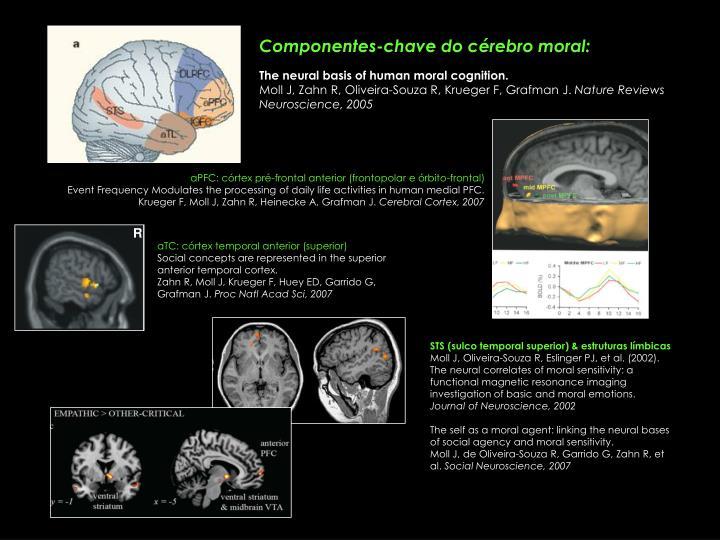 aPFC: córtex pré-frontal anterior (frontopolar e órbito-frontal)