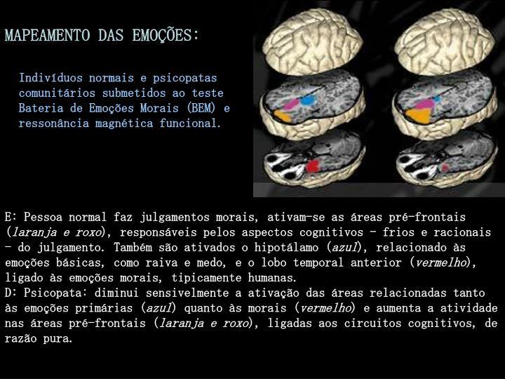 MAPEAMENTO DAS EMOÇÕES: