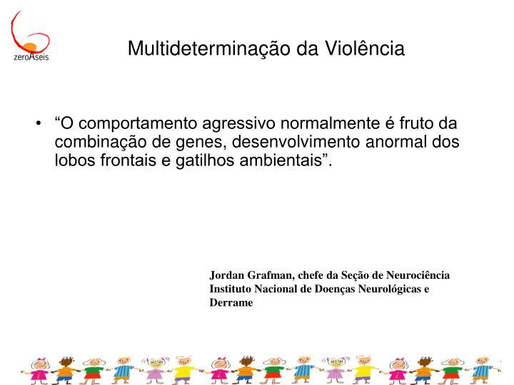 Multideterminação da Violência