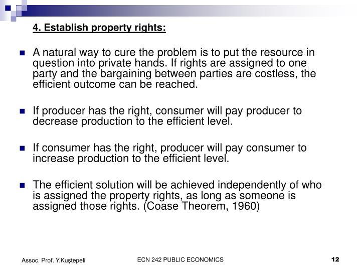 4. Establish property rights: