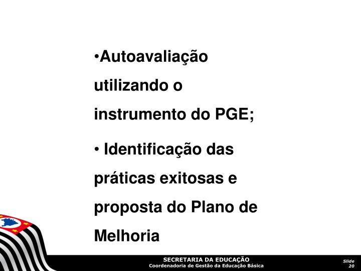Autoavaliação utilizando o instrumento do PGE;