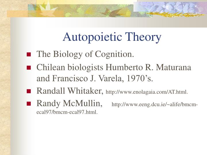 Autopoietic Theory