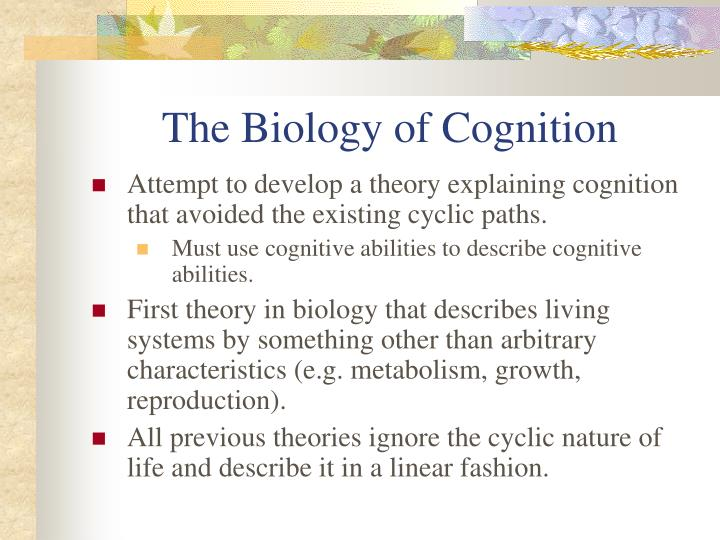 The Biology of Cognition