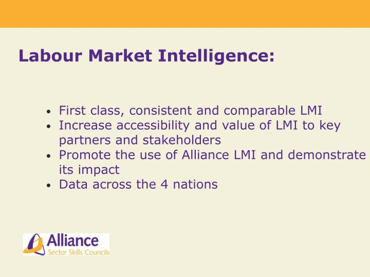 Labour Market Intelligence: