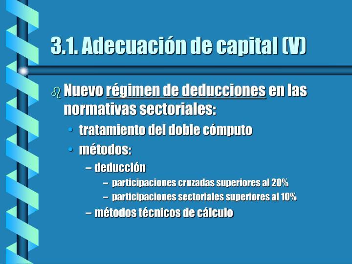 3.1. Adecuación de capital (V)