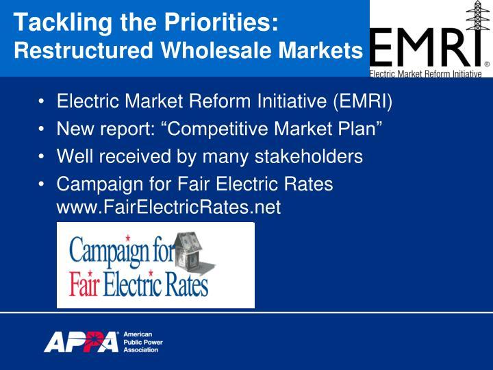 Electric Market Reform Initiative (EMRI)