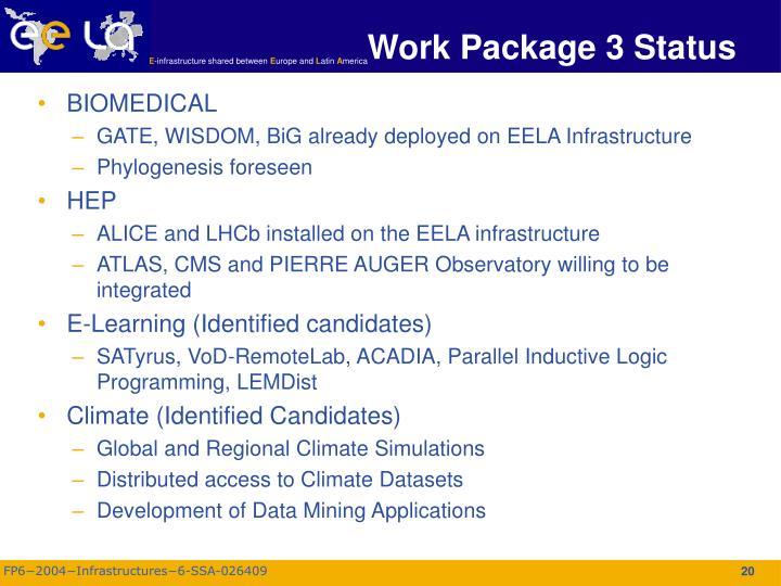 Work Package 3 Status