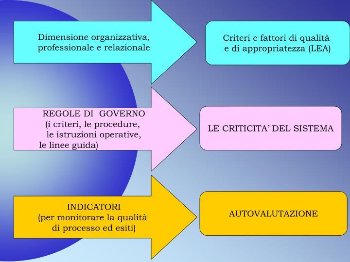 Dimensione organizzativa,
