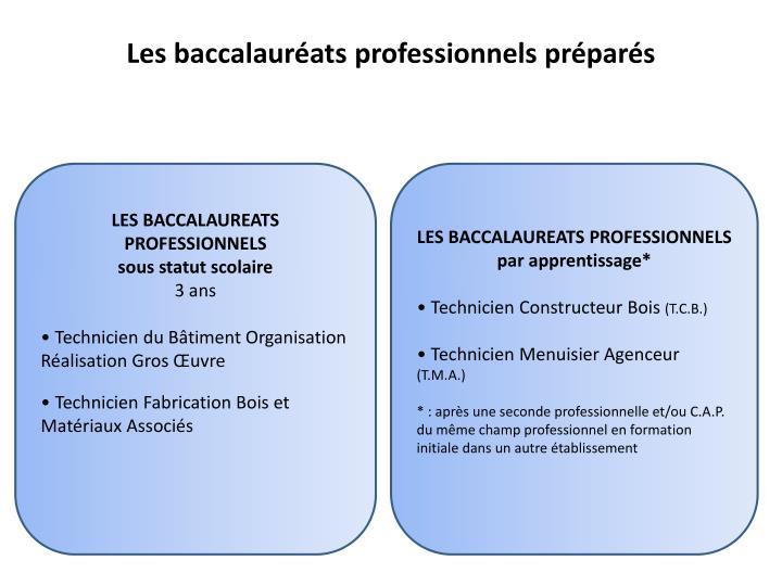 Les baccalauréats professionnels préparés