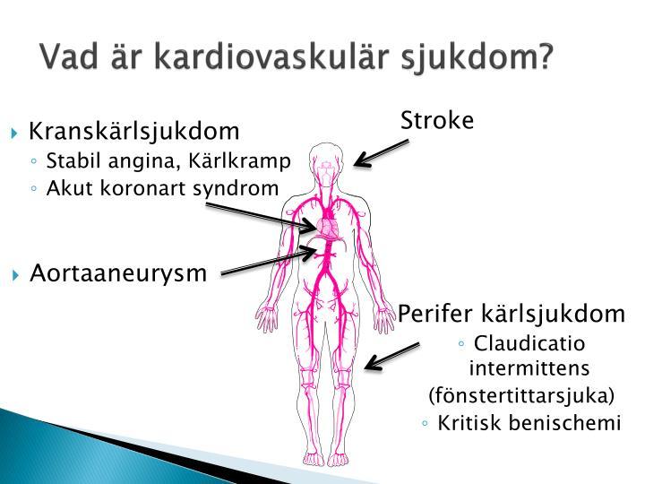 Vad är kardiovaskulär sjukdom?