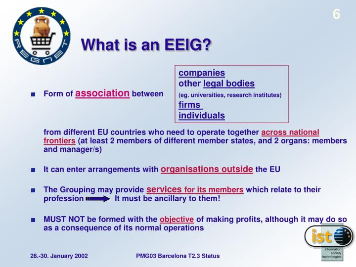 What is an EEIG?