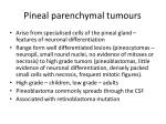 pineal parenchymal tumours