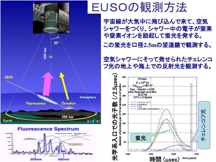光学系入口での光子数