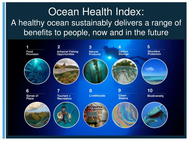 Ocean Health Index: