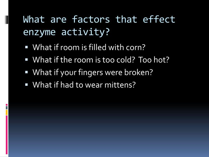 What are factors that effect enzyme activity?