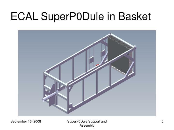 ECAL SuperP0Dule in Basket