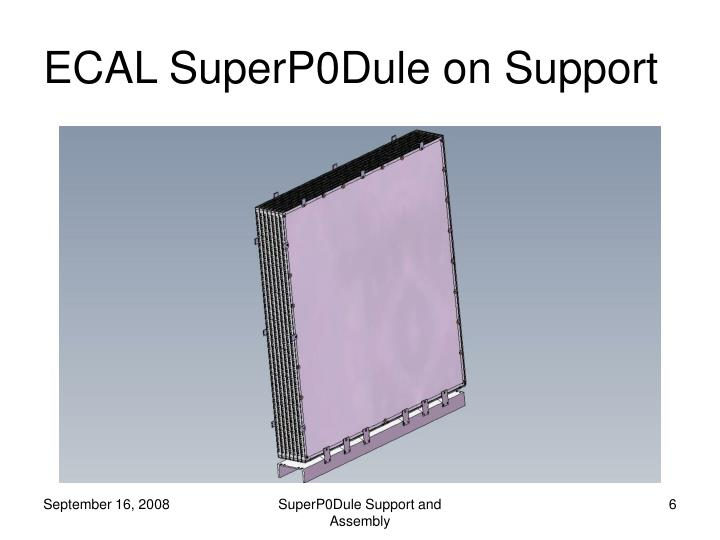 ECAL SuperP0Dule on Support