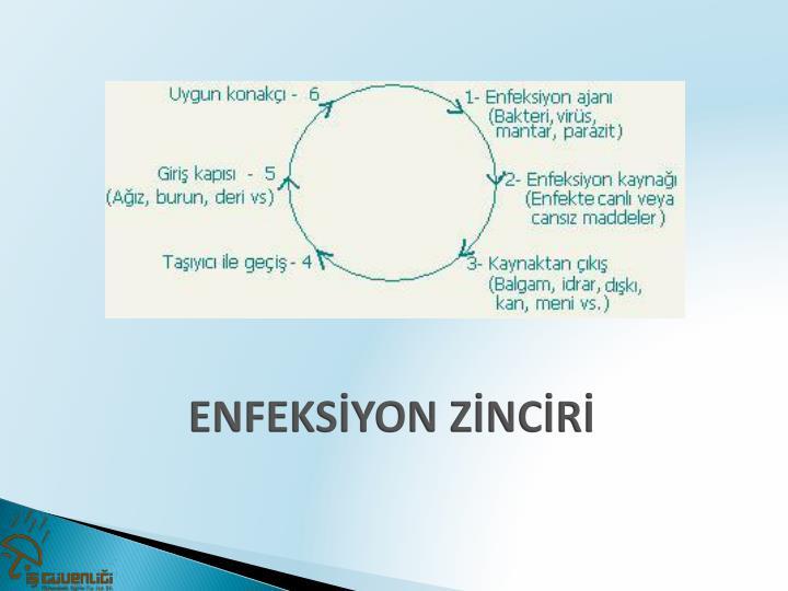 ENFEKSİYON ZİNCİRİ