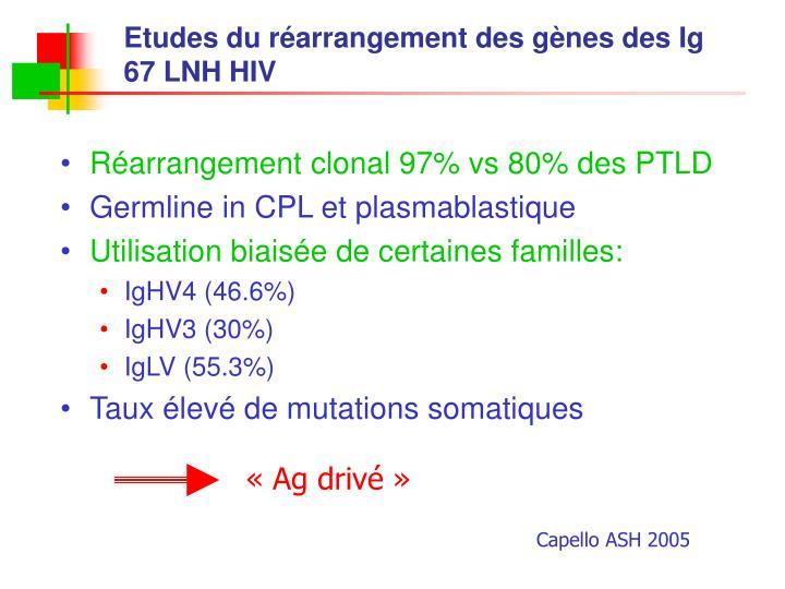 Etudes du réarrangement des gènes des Ig