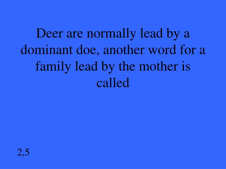 Deer are normally lead by a dominant doe, another word for a family lead by the mother is called