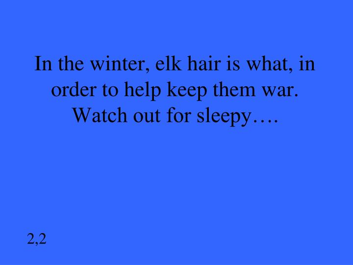 In the winter, elk hair is what, in order to help keep them war.  Watch out for sleepy….