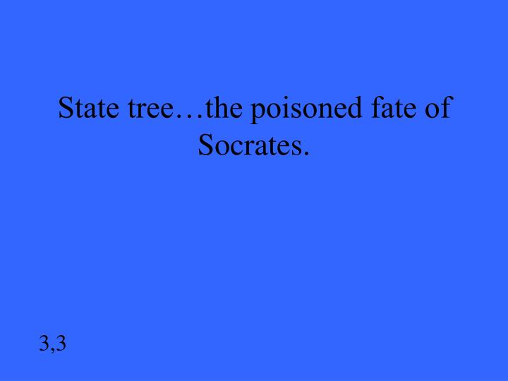 State tree…the poisoned fate of Socrates.
